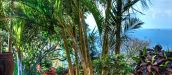 ROSTALYN GUEST HOUSE